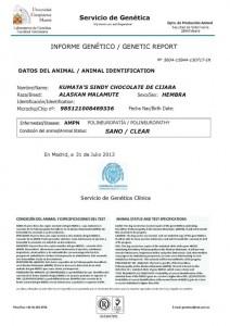 Certificado UCM