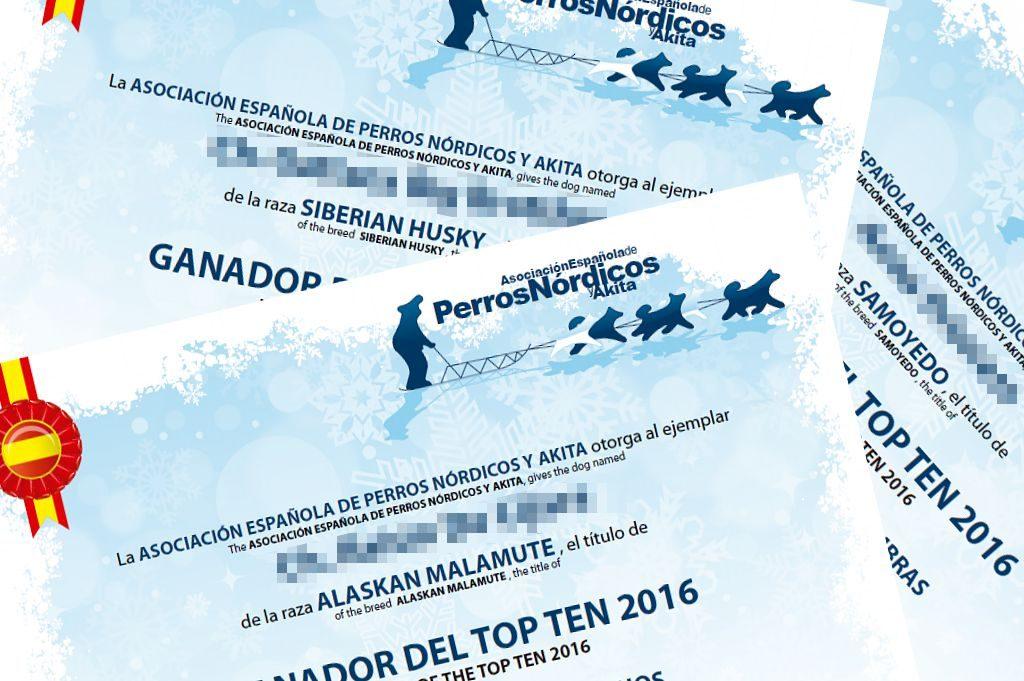 RESULTADOS Y DIPLOMAS TOPTEN 2016