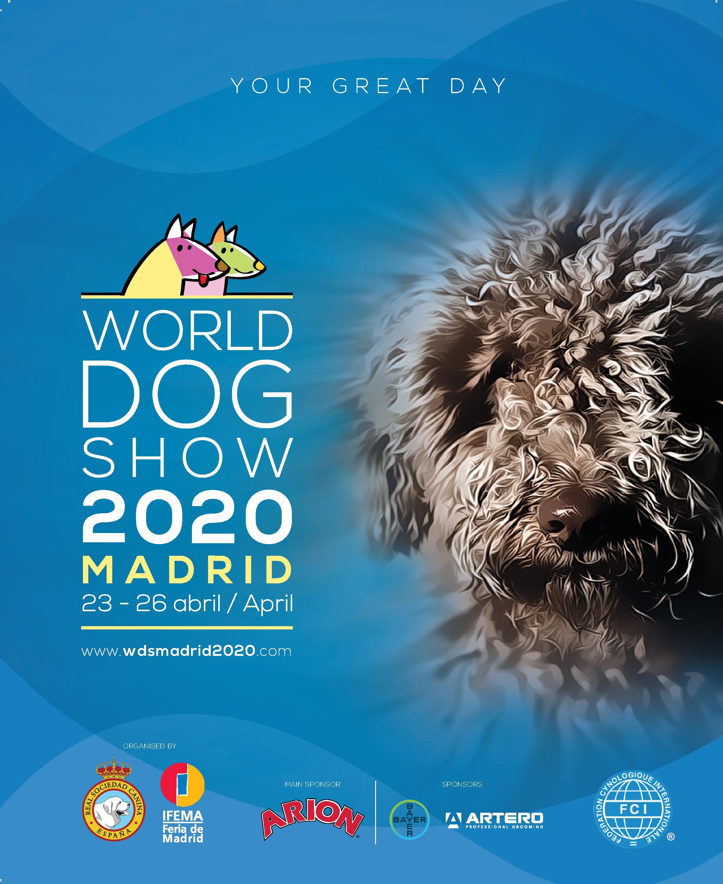 Haz click en la imagen para acceder a la web de la WDS 2020 Madrid